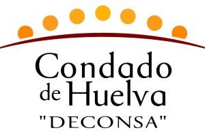 La viabilidad de Desarrollo del Condado depende del contrato de ayuda a domicilio, señala la Cámara de Cuentas