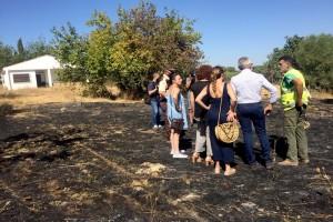 Bonares y Lucena, declaradas zonas afectadas por emergencias de protección civil por los incendios que han sufrido