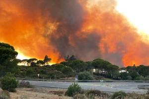 Bonares y Lucena del Puerto valoran en casi 800.000 euros los daños causados por los incendios del mes de agosto