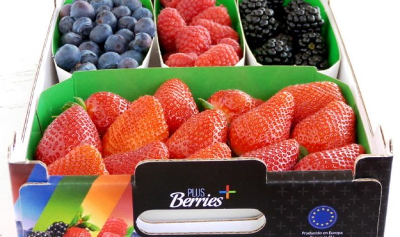 Bonares presente en Fruit Attracción 2012 donde Plus Berries presenta su nuevo mixto de berries.