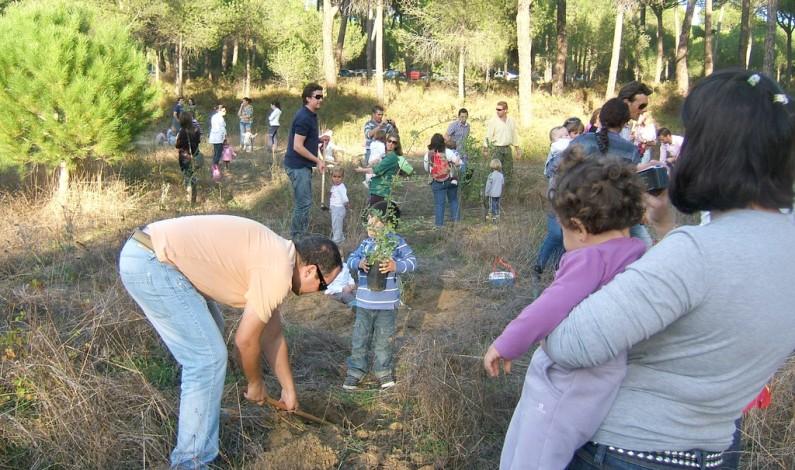 Bonares celebrará el Día del árbol con los niños y niñas nacidos en el año 2014