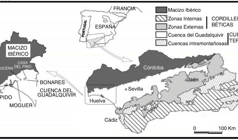 Científicos de la UHU hallan en Bonares un microcrustáceo de hace 5 millones de años.