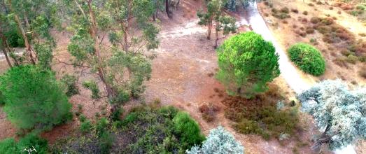 El Arboreto del Villar a vista de dron.
