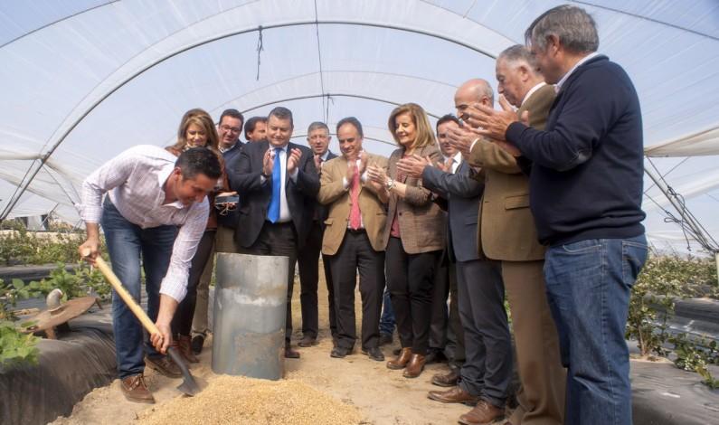 La Plataforma aplaude la llegada  de agua superficial para 724 hectáreas del trasvase de 4,99  hm3.