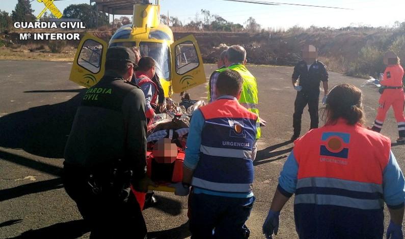 Auxilian a un herido que cayó de una altura de 9 metros de un árbol en Palos de la Frontera.