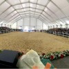 """Feria Agroganadera y Comercial """"Comarca de Doñana"""" de Rociana del Condado 2019."""