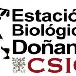 la Estación Biológica de Doñana oferta becas para la formación práctica de universitarios  de la comarca.