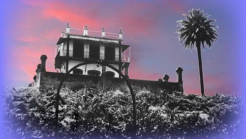 """""""La Casa del Pino"""""""