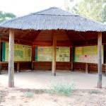 Visita guiada al Arboreto del Villar.