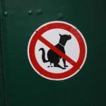 La caca de los perros, un problema en Bonares.