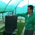 Primera Granja de Caracoles en Bonares, HELIXHUELVA.