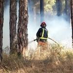 Efectivos del infoca trabajan en la extinción de un incendio en Bonares.