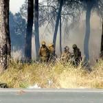 """incendio Bonares"""
