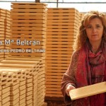 Cerámicas Pedro Beltrán azulejos pintados a mano, inspirados en la tradición andalusí.