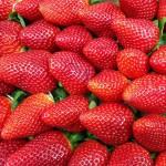 Comienza el reparto de fresas para unas campanadas solidarias.