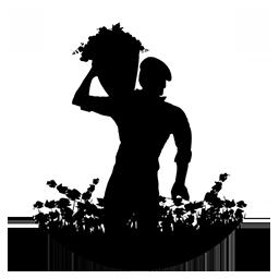 logo bodega del socorro