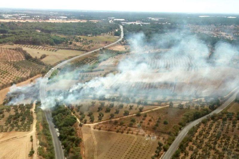 incendio forestal bonares