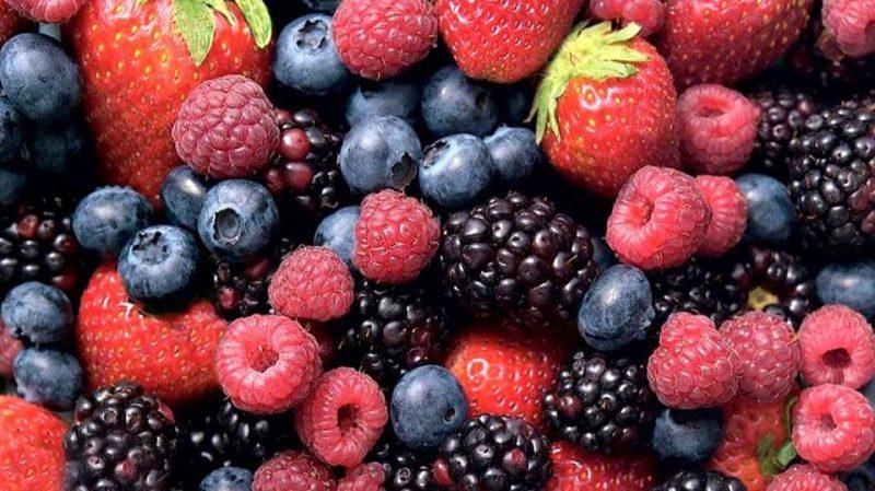 frutos rojos huelva