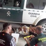 Recuperado en una chatarrería de Bonares 600 kilos de cable de cobre procedente de varios robos