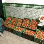 Recuperados 226 kilos de fresas que habían sido hurtadas en una finca de Niebla.
