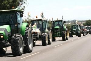 La Plataforma en Defensa de los Regadíos ultima los detalles de la tractorada hacia El Rocío