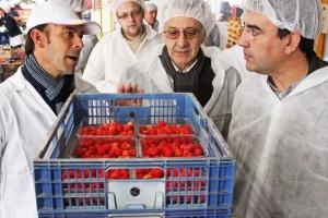 Mario Jiménez realiza una visita a la Sociedad Cooperativa Hortofrutícola de Bonares Bonafru.