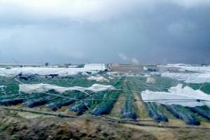 Un fuerte Tornado causa graves daños en Palos de la Frontera.