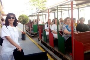 Usuarios y auxiliares de DECONSA visitan las Cruces de Bonares a bordo del tren turístico.