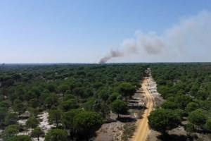 Declarados dos incendios forestales en Bonares y Aroche.
