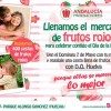 Bonafru reparte frutos rojos este domingo en el Parque Alonso Sánchez de Huelva.