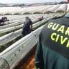 La Guardia Civil activa este jueves el dispositivo especial de seguridad para la campaña agrícola.