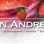 Concurso degustación, prueba y elige la mejor fresa.