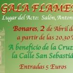 Gran Gala Flamenca a beneficio de la Cruz de la Calle San Sebastian.