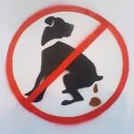 prohibido-no-juntar-la-caca