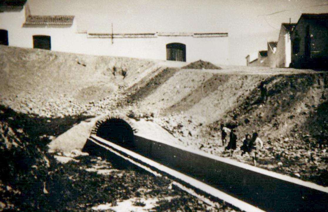 año 1919 bonares