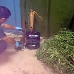 Detenidos dos individuos uno de ellos menor por robos en Bonares.