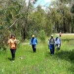 Jornada de reforestación en el Arboreto del Villar.