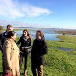 En excelente estado La marisma de Doñana tras las precipitaciones de los últimos meses.