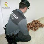 Dos detenidos por el robo de cable de cobre en Bonares.