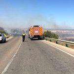 Extinguido un incendio forestal en Bonares.