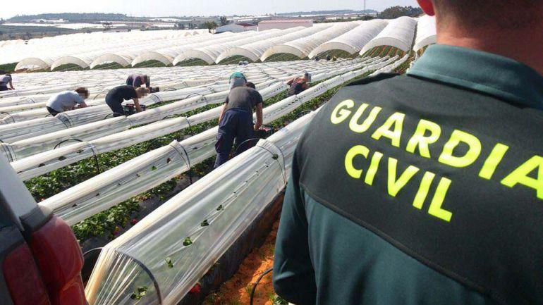 agricola guardia civil huelva